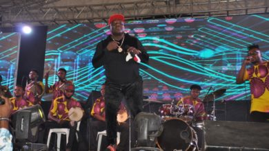 Photo of 'ONE LAGOS FIESTA' (OLF), EPE