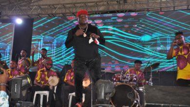 Photo of 'ONE LAGOS FIESTA' (OLF), EPE